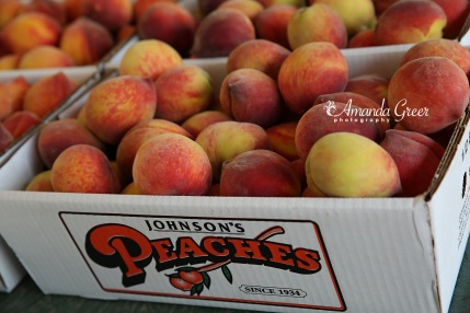 Johnsons Peaches 10 WM