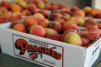 Johnsons Peaches 9 WM