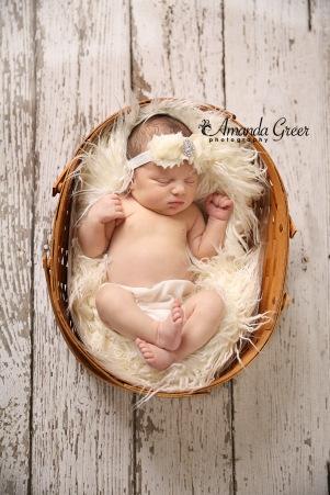 Avery Dawn Newborn 1 WM