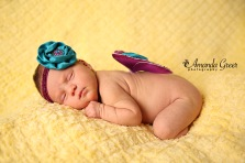 Avery Dawn Newborn 5 WM
