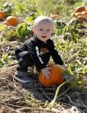 jonah-and-karson-pumpkin-patch-10