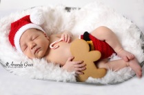 wv-newborn-photographer-christmas-session