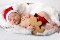 wv-newborn-photographer-christmas-session