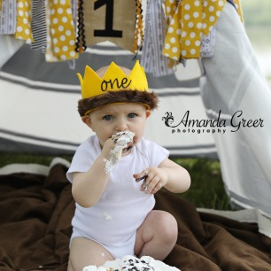 Ripley WV Photographer Ravenswood WV Riverfront First Birthday 5