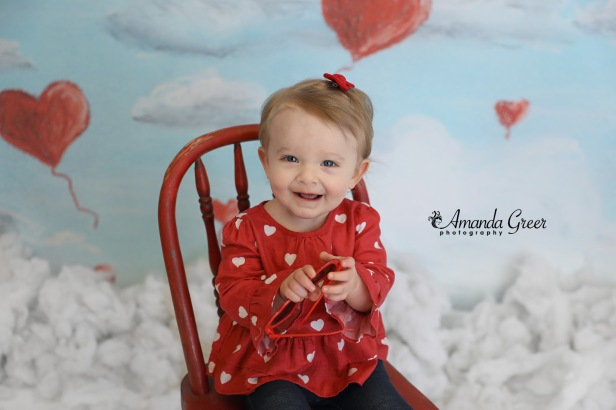amanda greer photography ripley wv photography studio charleston wv photographer 14