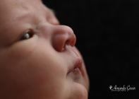 Amanda Greer Photography Ripley WV Photography Studio Charleston WV Photographer WV Family Photographer WV Newborn Photographer 16