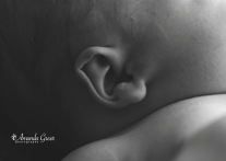 Amanda Greer Photography Ripley WV Photography Studio Charleston WV Photographer WV Family Photographer WV Newborn Photographer 19